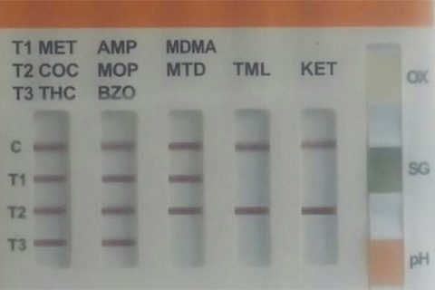 10 Drug Test Cup Results